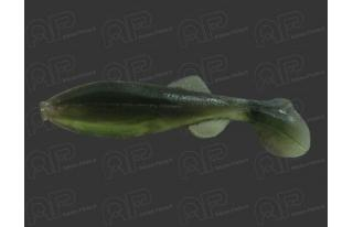 MICRO SHAD Mister Twister